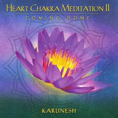 Heart Chakra Meditation II - Karunesh