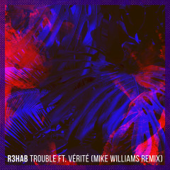 Trouble (Mike Williams Remix) (Single)