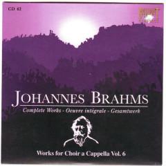 Johannes Brahms Edition: Complete Works (CD42)