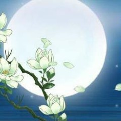 Phong Hoa Tuyết Nguyệt CD 4 - Nguyệt