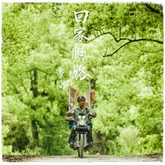 回家的路(失孤/2015央視春晚 主題曲) / Thất Cô OST