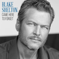Came Here To Forget - Blake Shelton