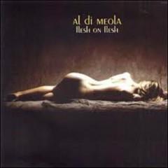 Flesh On Flesh - Al Di Meola