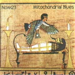Mitochondrial Blues