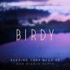 Keeping Your Head Up (Don Diablo Remix) (Radio Edit) (Single)