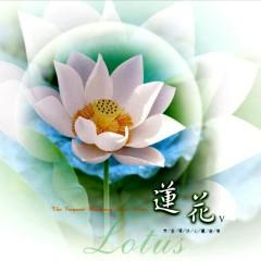 Lotus (蓮花)
