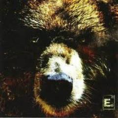 The Bear - Element Eighty