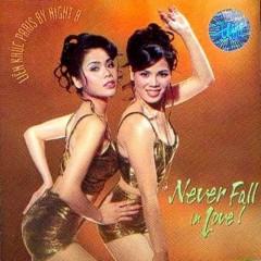 Never Fall In Love (Liên khúc Paris By Night 8)