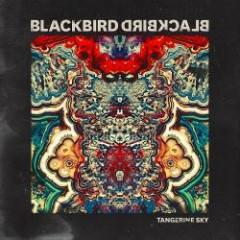 Tangerine Sky - Blackbird Blackbird