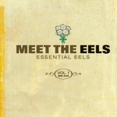 Meet The Eels_ Essential Eels, Vol. 1 1996-2006 (CD1)