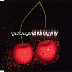 Androgyny - Garbage