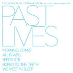Journal Of Popular Noise - Past Lives