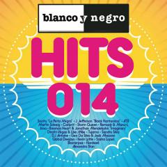 Blanco y Negro Hits 2014