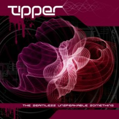 The Seamless Unspeakable Something - Tipper