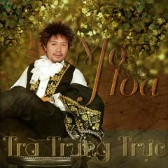 Mơ Hoa - Trà Trung Trực