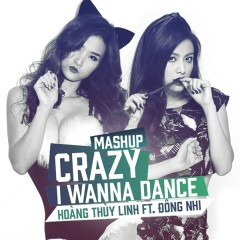 Crazy, I Wanna Dance (Mashup)
