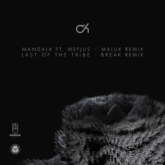 Mandala (Malux Remix) / Last Of The Tribe (Break Remix) - Camo & Krooked