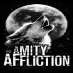 Afflictions Of 2004 - The Amity Affliction