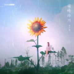 Sunflower (Single)