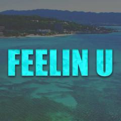 Feelin U (Single)