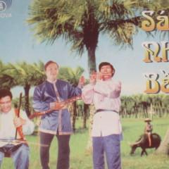 Độc Tấu Sáo - Nhị - Bầu - Various Artists