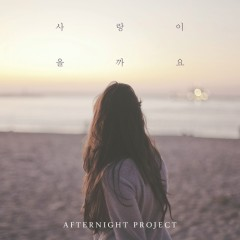 Will Love - Afternight Project
