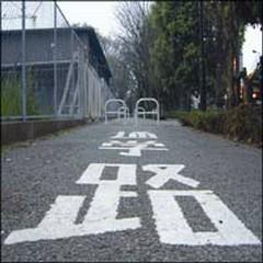 Koya Haruka ni/Zutoro - The High-Lows