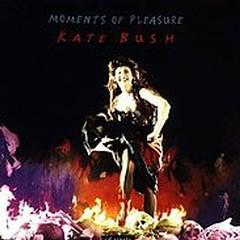 Moments of Pleasure 12 inch vinyl - Kate Bush