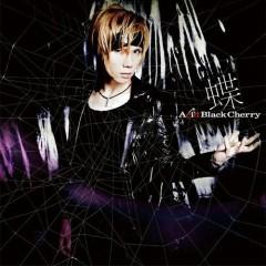 蝶 (Chou)  - Acid Black Cherry
