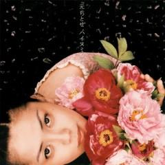 ハイヌミカゼ(Hai nu Mikaze)  - Chitose Hajime
