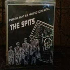 Spend The Night In A Haunted House With... The Spits 7''