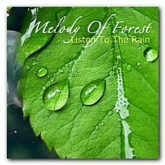Melody Of Forest - Listen To The Rain