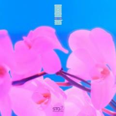 Dream In A Dream (Single)