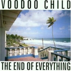 The End Of Everything (Voodoo Child) - Moby