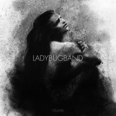 Crumb - Ladybug Band