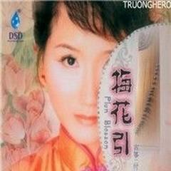 Plum Blossom (Đàn Tranh) - Funa