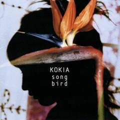 Song Bird - Kokia