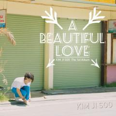 A Beautiful Love (Vol.1)