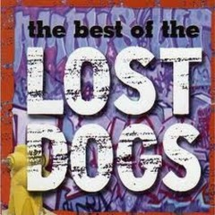 The Best Of The Lost Dogs