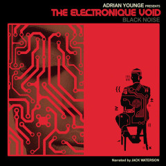 The Electronique Void - Adrian Younge