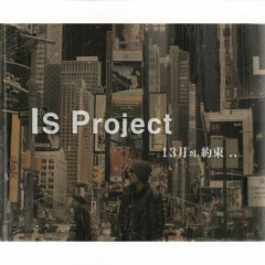 13 Month Promise - Is Project