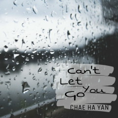 Can't Let You Go (Single)