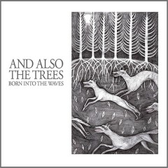 Born Into The Waves - And Also The Trees