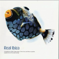 Real Ibiza volume 1 Disc1