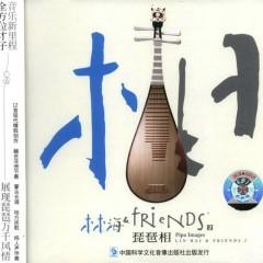 Tỳ Bà Tương/ 琵琶相 - Lin Hai & Friends