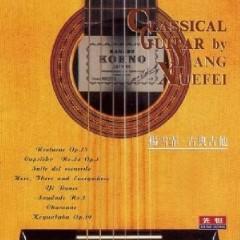 Classical Guitar - Yang Xuefei