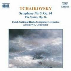 Tchaikovsky - Symphony No. 5 - The Storm - Antoni Wit,Polish Chamber Orchestra