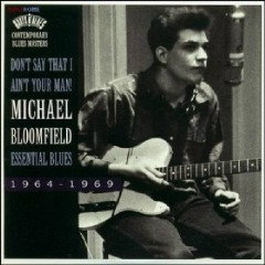 The Perfect Guitar Collection CD 2 - Don't Say That I Ain't Your Man - Michael Bloomfield
