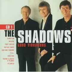 Good Vibrations (CD 1)