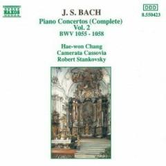 Piano Concertos 2 - Robert Stankovsky